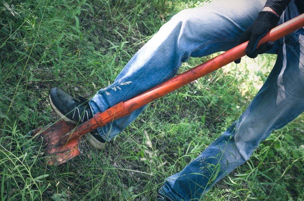 Mand der bruger en spade i sin have